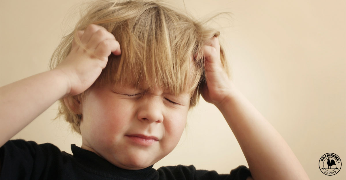 what you should know about lice