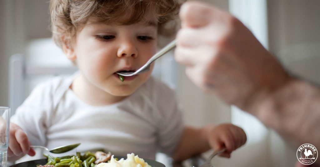 3 Tips to Feed Your Toddler the Right Amount