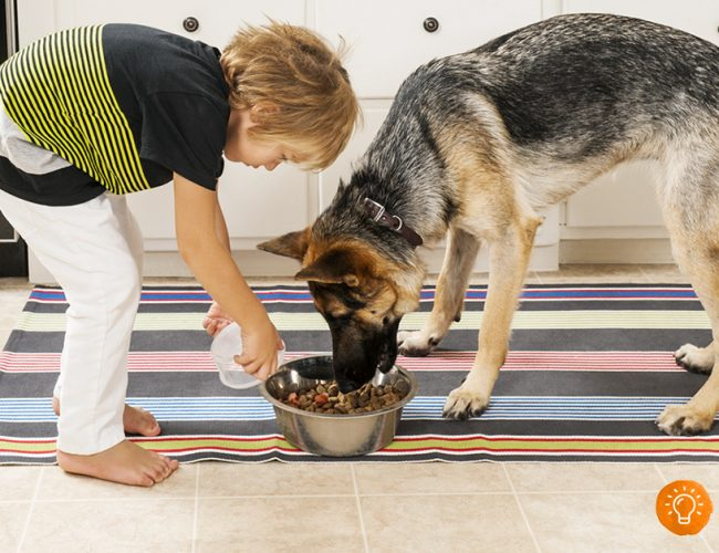 5 Ways to Involve Your Child in Household Chores