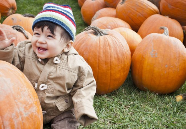 Baby boy visits a pumpkin patch as part of his family's fall bucket list