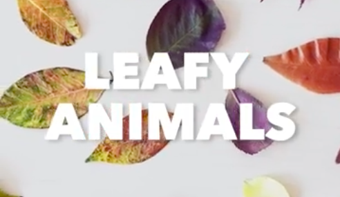 Fall Craft for Kids: Leafy Animals