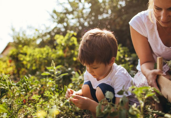 Mother and young son celebrate spring by gardening together