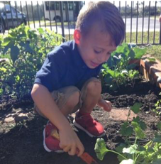 boy playing outdoors at Primrose School of Lutz