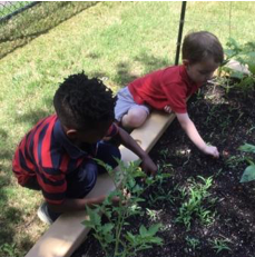 primrose students at primrose school of new irving park play outside in their garden
